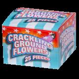 Crackling grondbloem 25 stuks