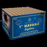 Havana Brightness